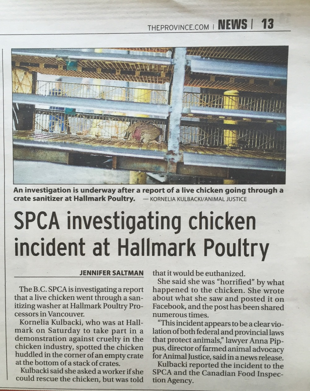 Reporting Animal Cruelty Works, Especially When Combined With Media