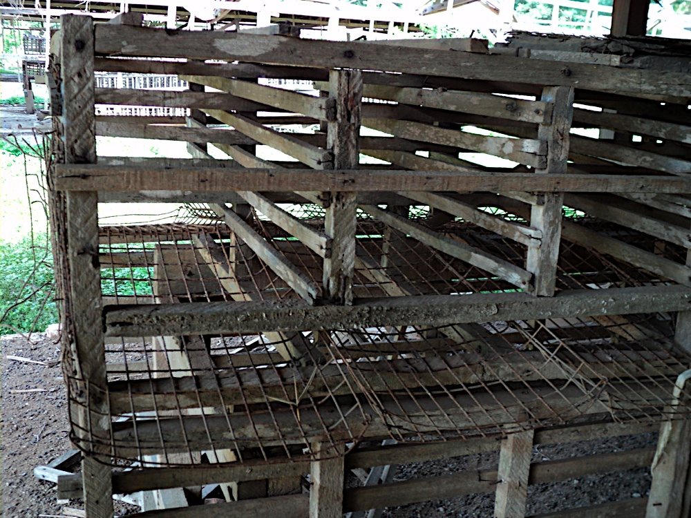 In Laos, factory farming has been tried and has failed. Pictured are abandoned cages for egg-laying hens. It's still more cost-effective there for the chickens to just run around.