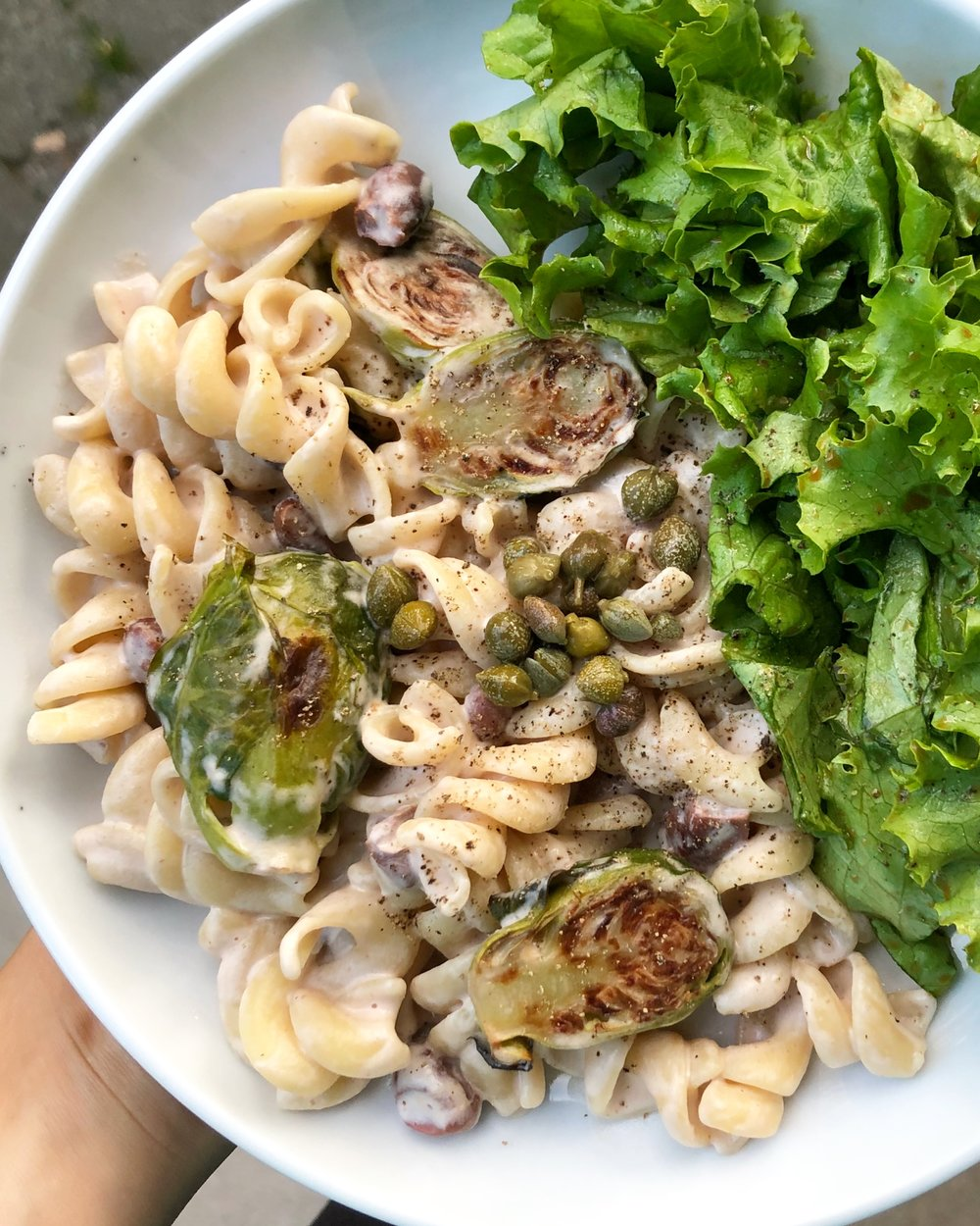 Cashew-walnut cream pasta with roasted brussels sprouts, pinto beans, capers, and green salad dressed with balsamic vinaigrette.