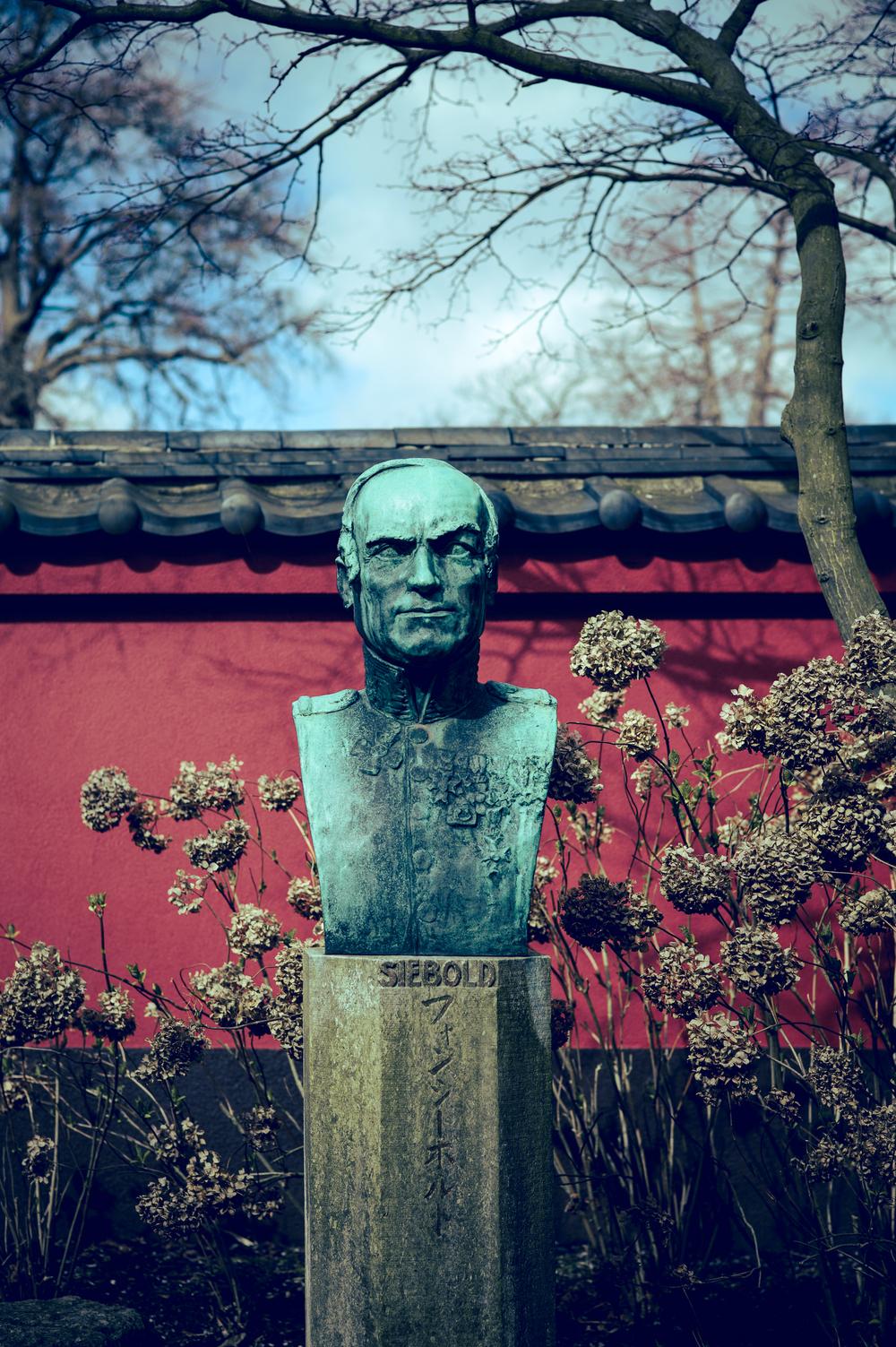 Bust of Philipp Franz Balthasar von Siebold