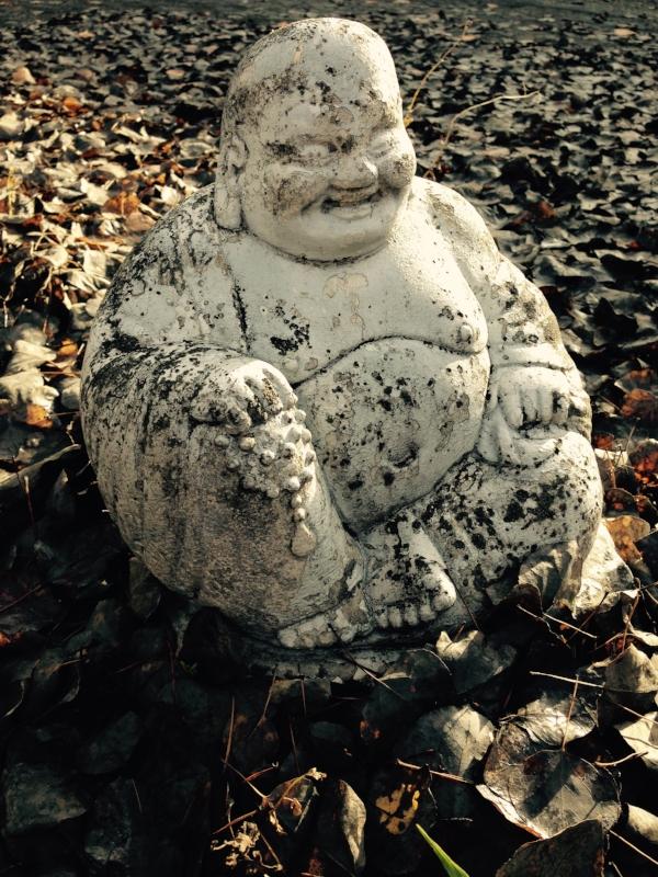 Fall Budai.jpg