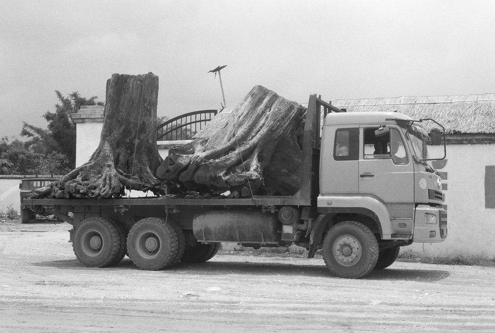 Chinese logging truck with Burmese trees on the China-Myamar border near Nongdao, Yunnan, China.