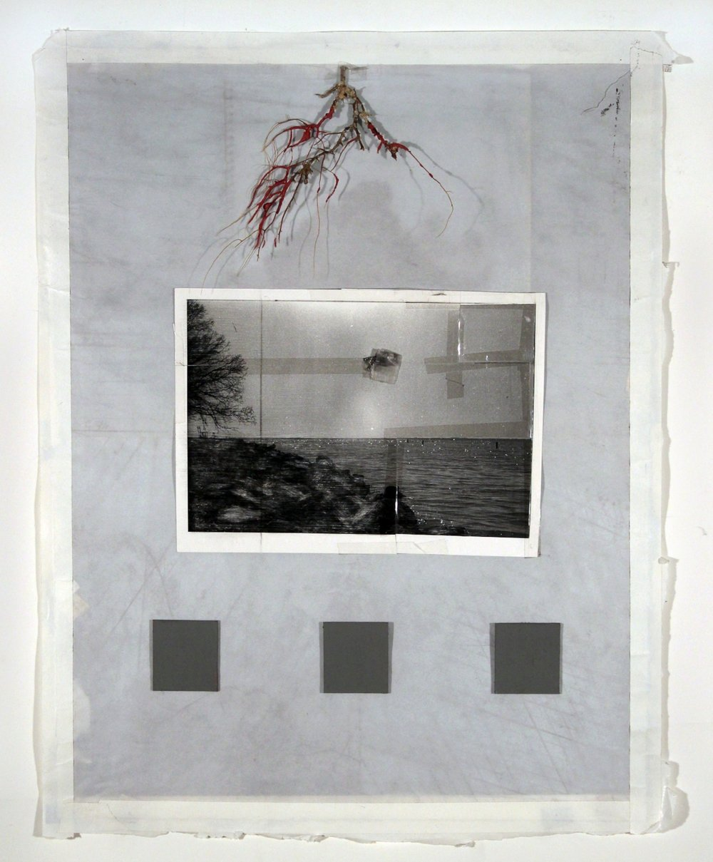 "Don't Go Where I Can't Find You    2018 acrylic, graphite, cardboard, branch, book pages, tracing paper, artist's tape, transparent tape, laser print on photo paper 25 1/2"" x 20"""