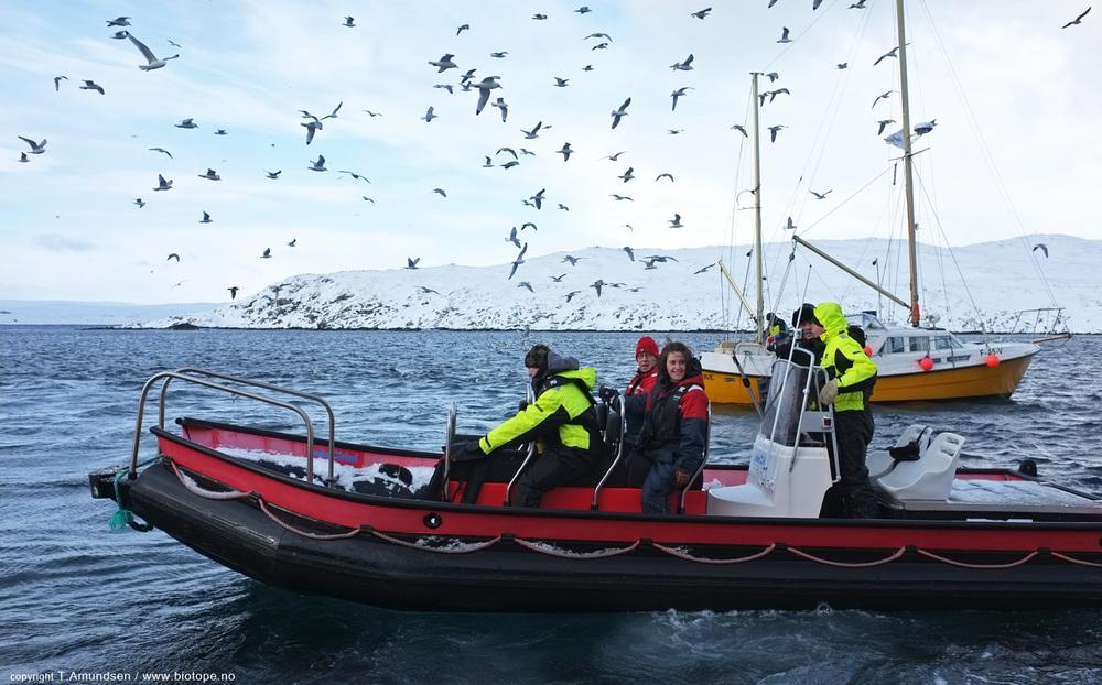 birders leaving Hornoya 2 march 2012 Amundsen Biotope.jpg