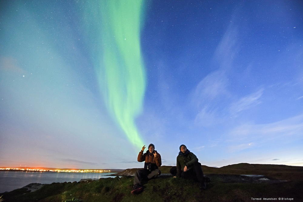 Hornøya watching Leachs Storm Petrels Sept2015 psedit Amundsen © Biotope.JPG