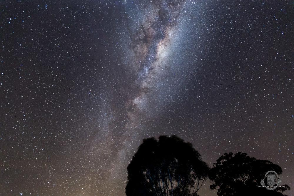 Rovinalea Astro.jpg
