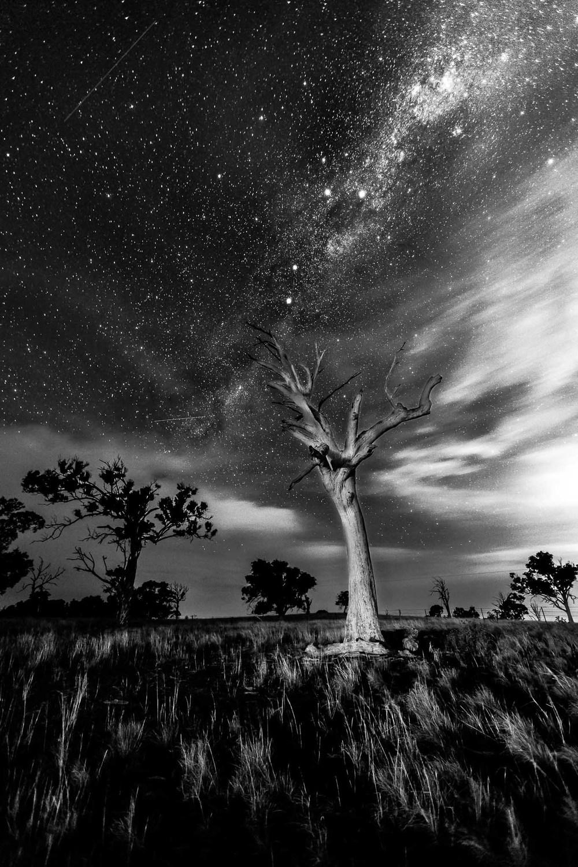 Shoot for the stars-1.jpg