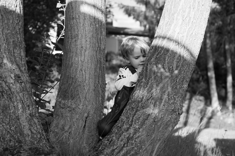 Vertieft ins Bäumeritzen (35mm, f/2,5, 1/640Sek., ISO 160)
