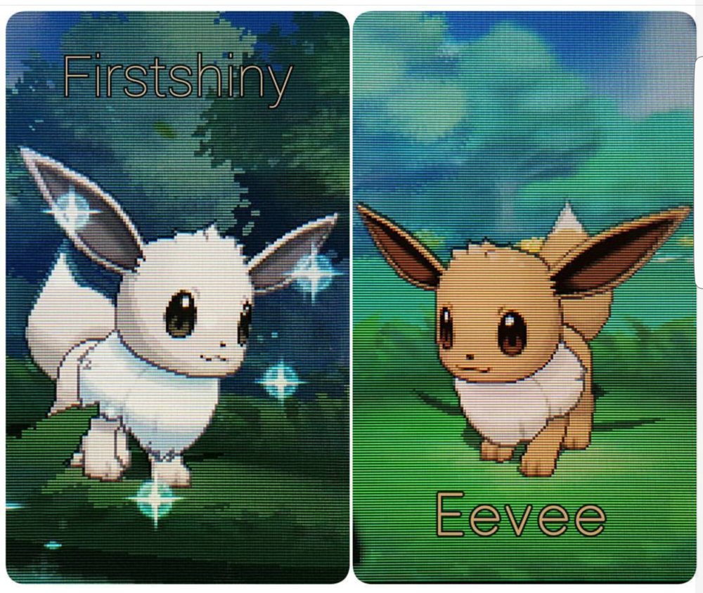 Eevee shiny version (left) which I've named FirstShiny. Eevee in it's normal form (right). Pleasant surprise from my game in Alpha Sapphire version.