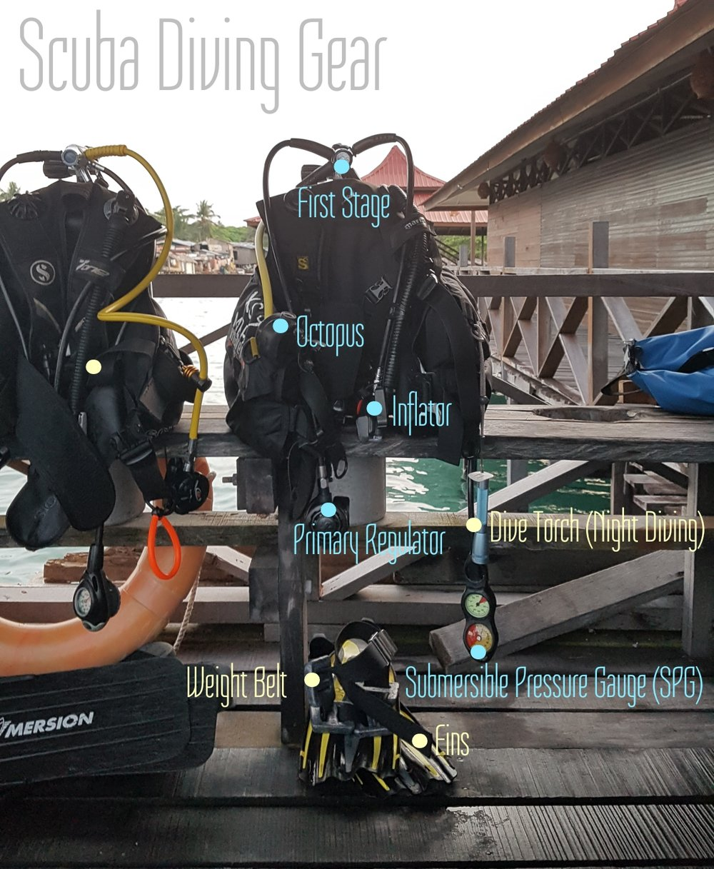 Diving (Scuba) gear. I've labelled the parts for the interested (which I hope you are because I'm going to bring you on a visual adventure of under the sea), and for refreshers like me.