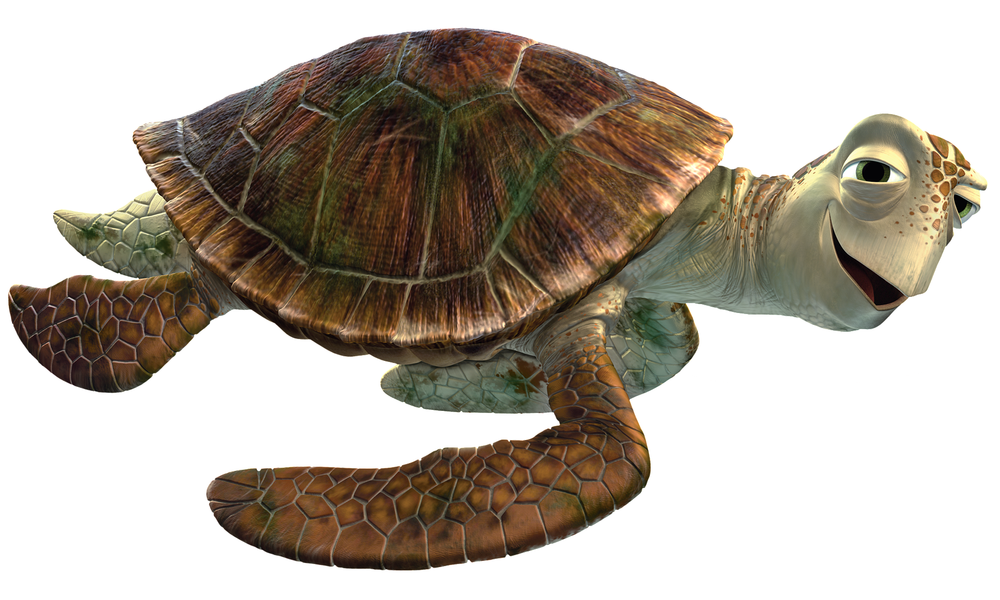 Crush from Finding Nemo should be a green sea turtle based on it's non-protruding beak and scute arrangements!Photo Credit: Pixar Wikia
