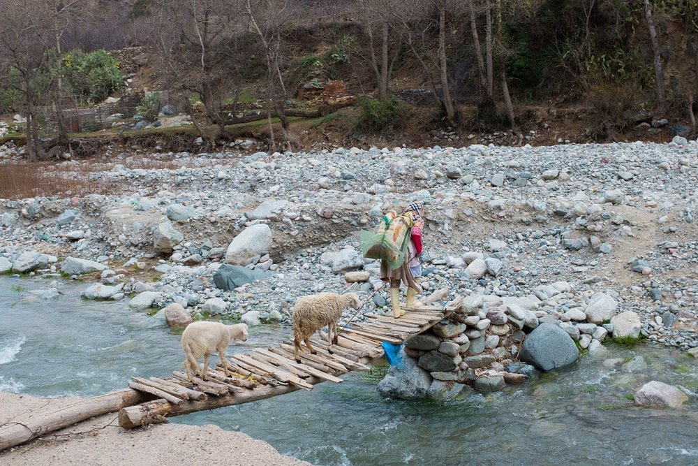 Local lady and her sheep crossing the river.
