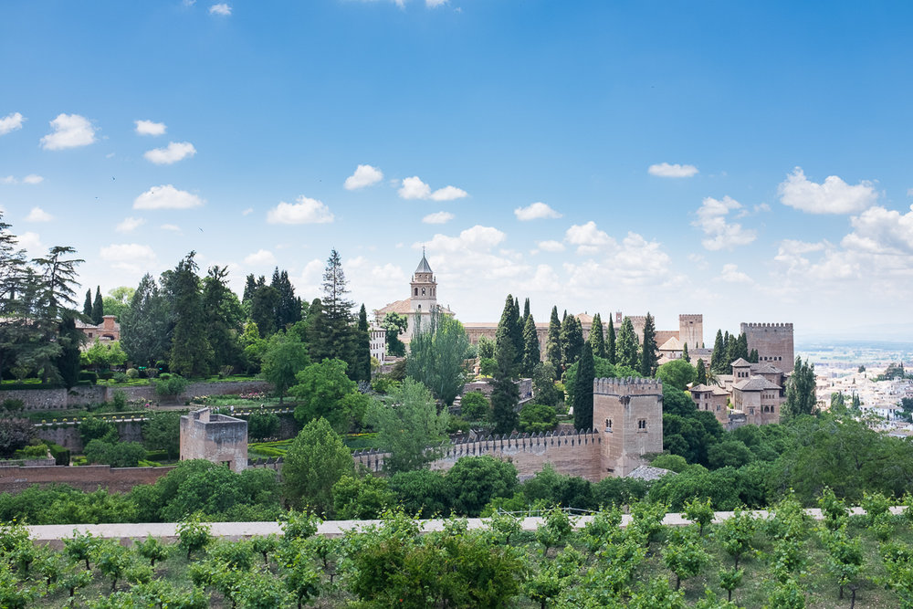 View of Alhambra from Generalife