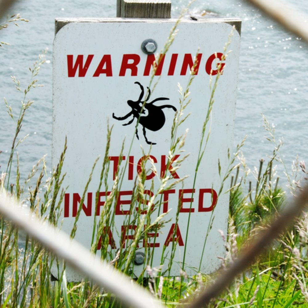 Tick bite prevention