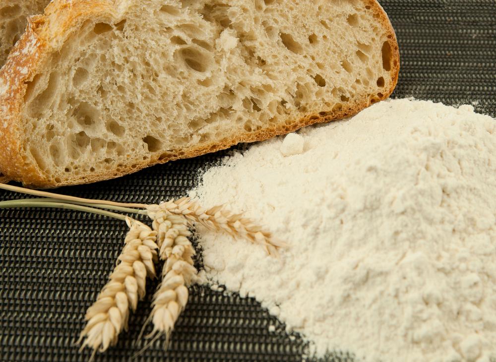 "Harina Gran Fuerza Very High Protein Flour ""Gran Fuerza"""