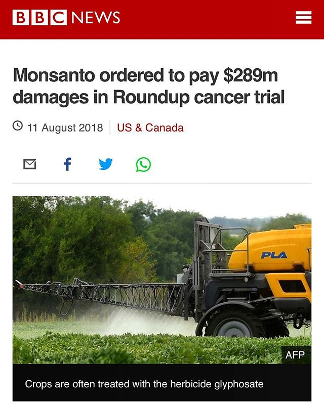 Today is a big win for truth! Monsanto (the company that developed GMO's) was found guilty on all counts and accused of malice, oppression or fraud.The manipulation of data, science and more has been ongoing and we deserve better.At Rebol, we have always believed that Monsanto and their products including GMO's are lethal. Today, this has been proven in a court of law.Grateful for this brave man and his family that sought out this trial, keep them in your prayers. #Rebol  #DumpTheJunk #Food #Health