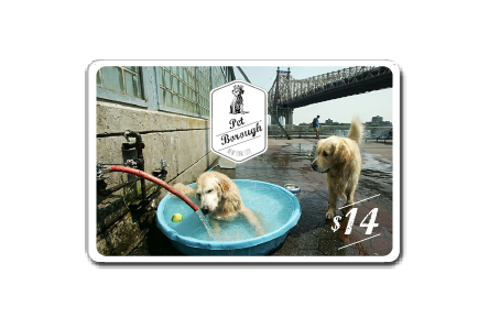 PetBoroughNYC-gift-1-digital+.png