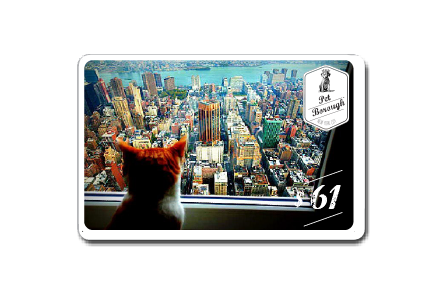 PetBoroughNYC-gift-5-digital+.png