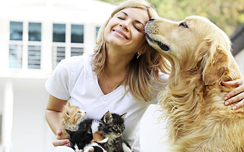 WE LOVE PETS - And we like to think they love us back