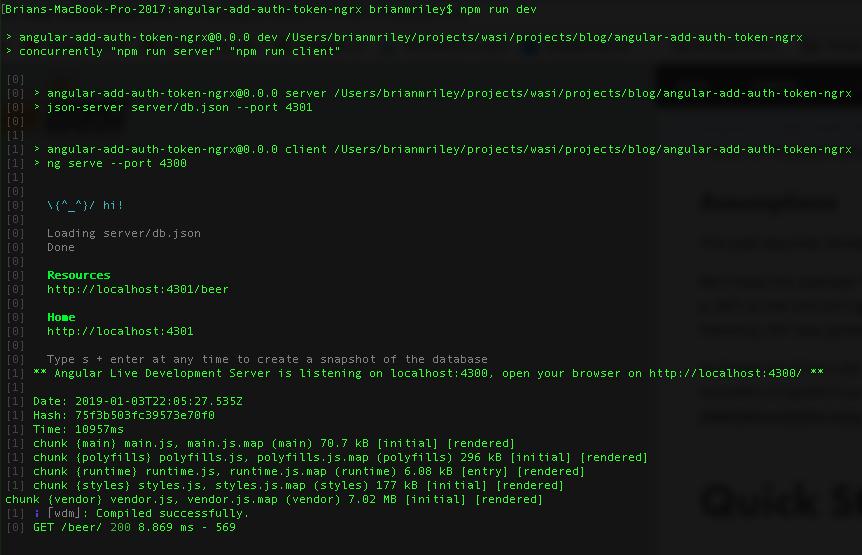 angular-add-auth-token-ngrx-cli-npm-run-dev.png