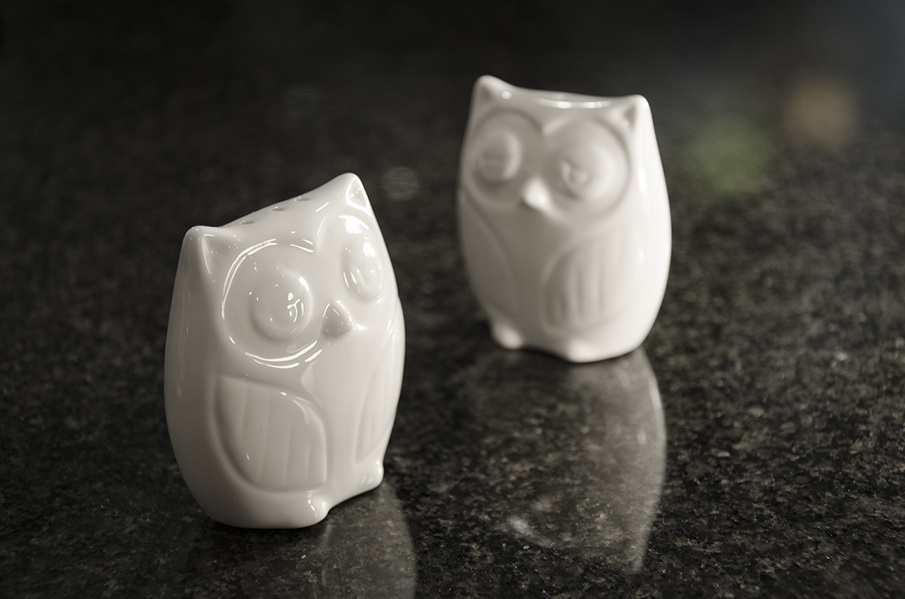 owls_LR_905.jpg