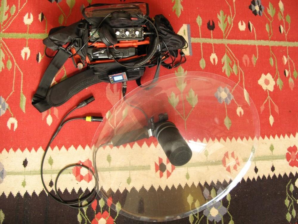 Telinga Parabolic Reflector