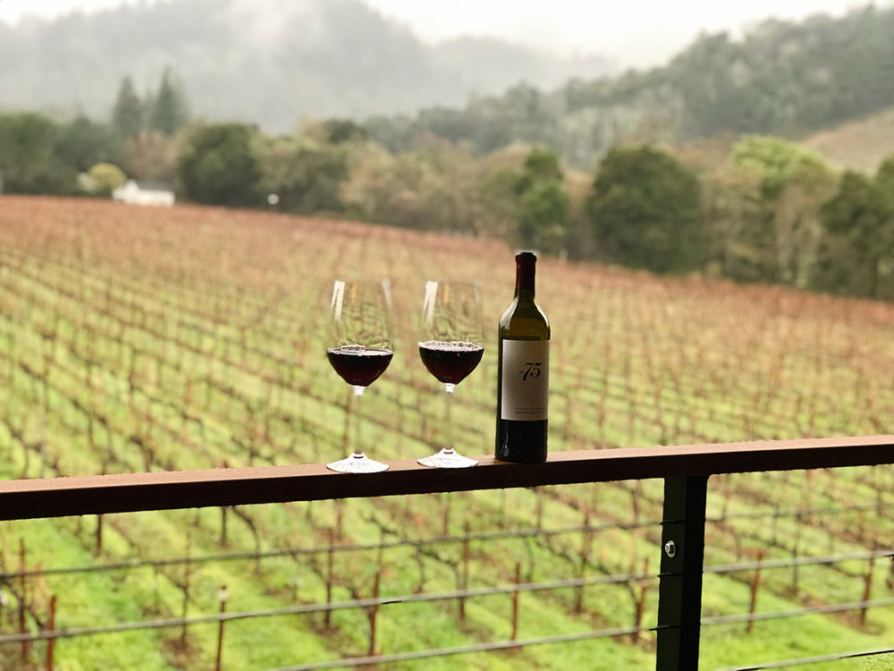 las-alcobas-hotel-napa-st-helena-vineyard-view-hotel-review-wine-bottle-glasses.jpg