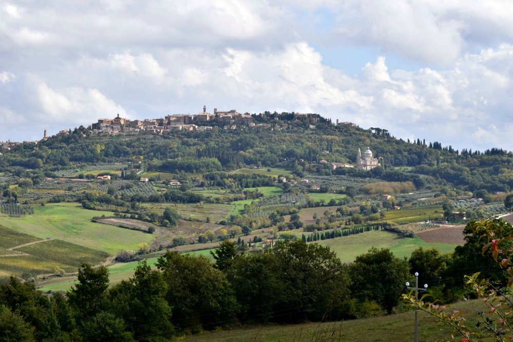 The view of Montepulciano from the Salcheto Winery
