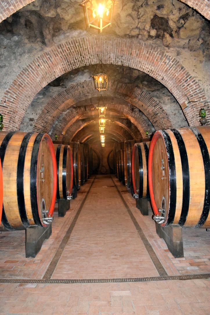 The wine cellar at Cantina Fattoria della Talosa