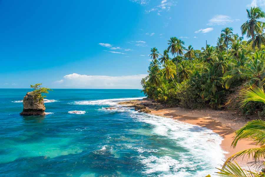 Guanacaste - .