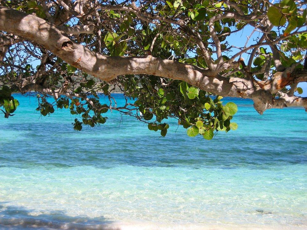 Barbados - .