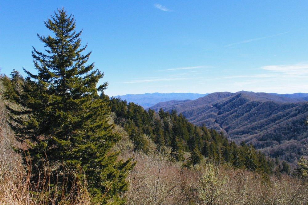 Carolina blue skies