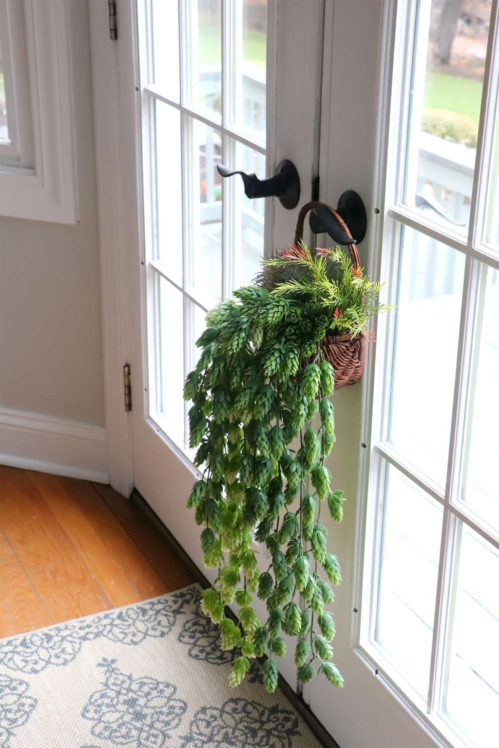 Hanging Foliage Basket | root + dwell