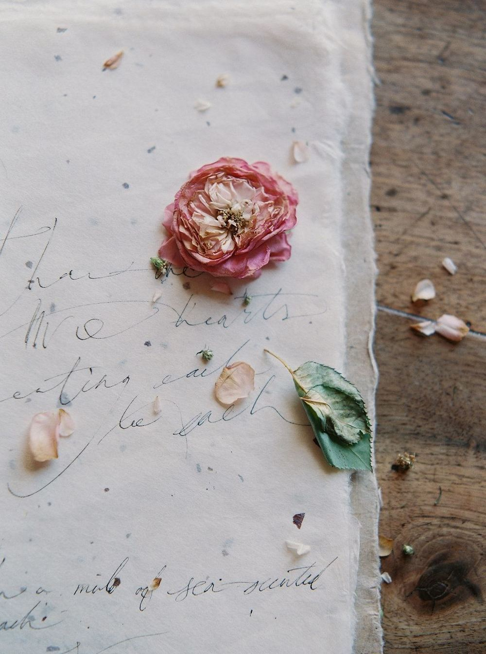 17-romantic-wedding-calligrapher-tara-spencer-wedding-sparrow.jpg