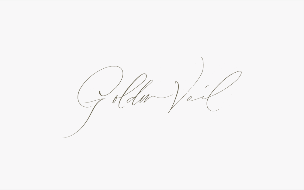 tara-spencer-design-calligraphy-logo-5.png