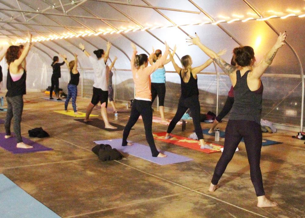 yogaroots6-1.jpg