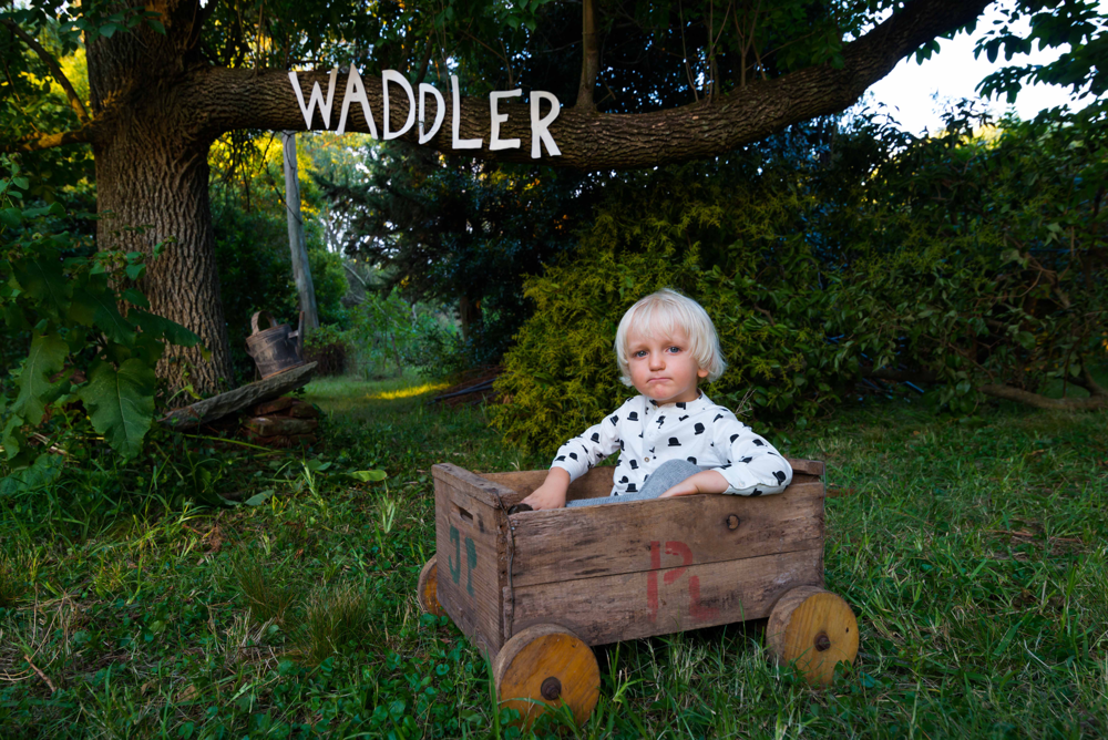 Waddler AW14 7.png