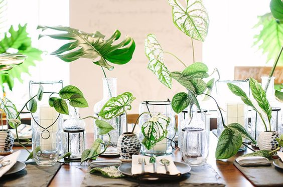 tropical table arrangement.jpg