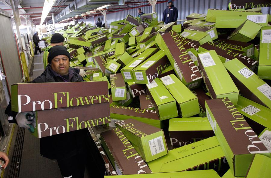 ProFlower Boxes.jpg