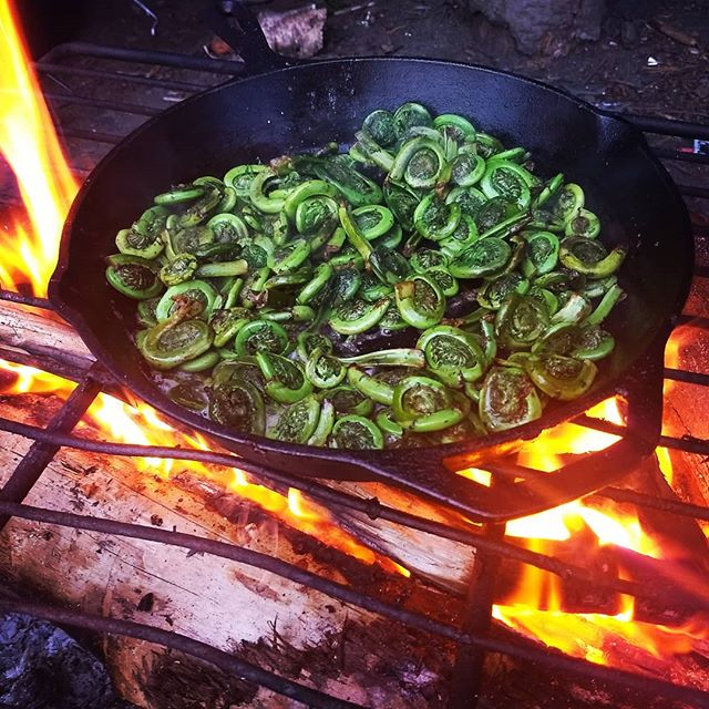 Fiddlehead season! #fiddleheads #hotsuppa #portlandmaine