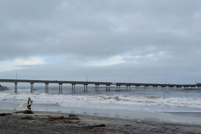 one-wild-life-lady-days-mug-club-women-surfer-at-ocean-beach