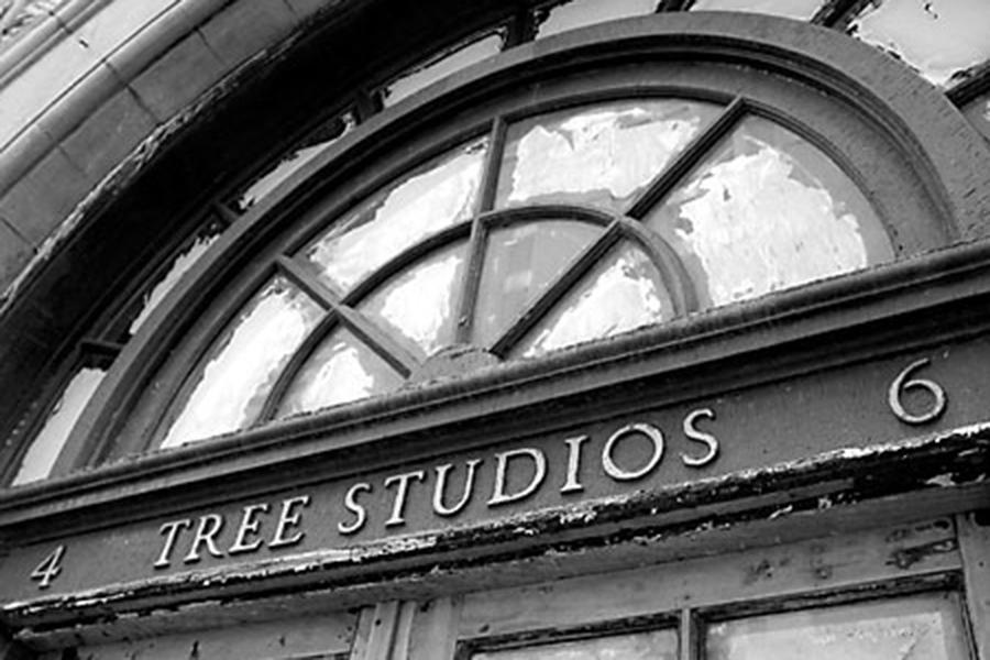 tree_studios.jpg