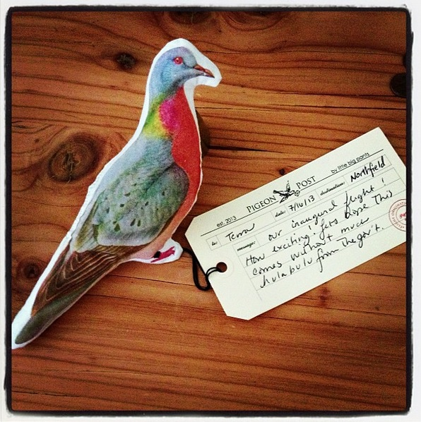 stuffed printed pigeon post