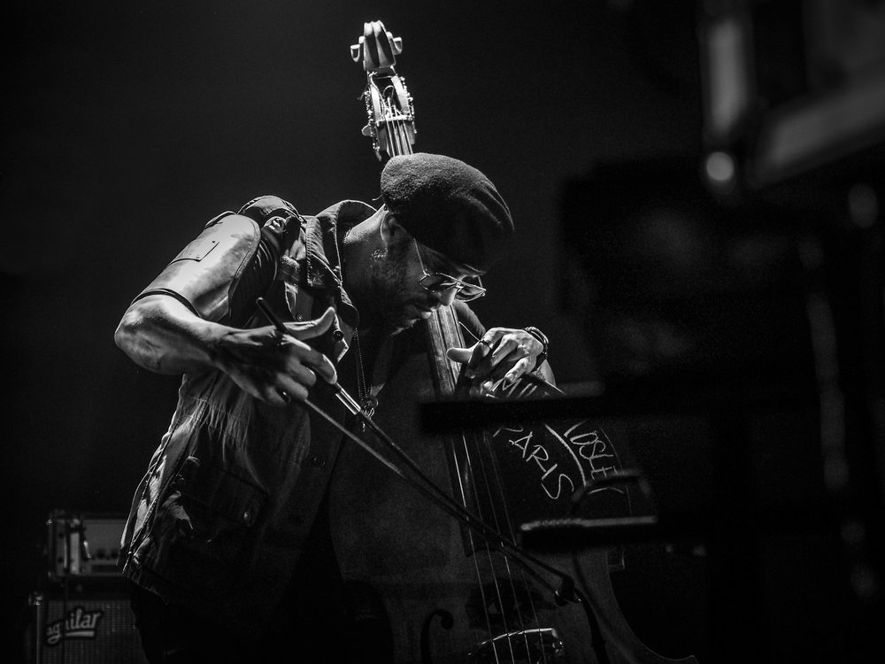 P1011343_Miles Mosley - Kamasi Washington show - by Elina Tran.jpg