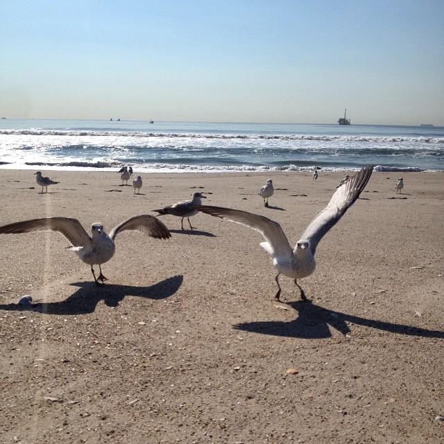 2014-09-18_1411050118.jpg