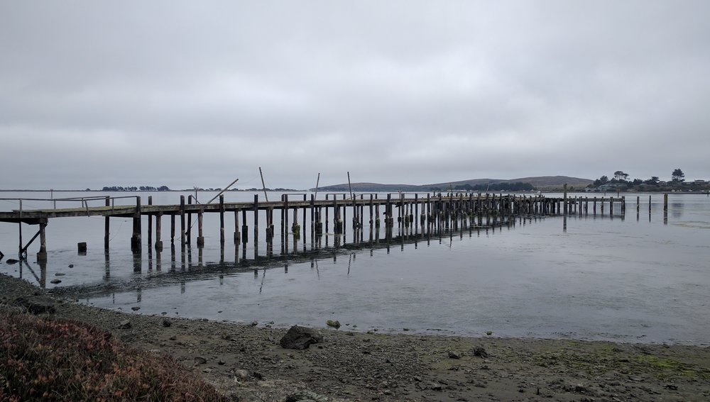 Gourmet au Bay is nestled in the marina of Bodega Bay overlooking a moody sea.