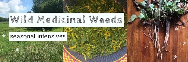 Wild Medicinal Weeds.jpg