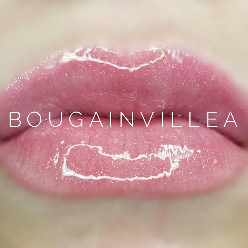 Bougainvillea.jpg