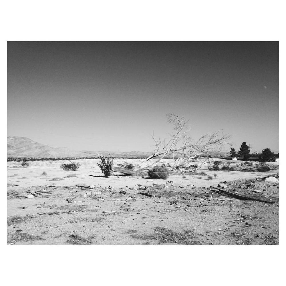 Mojave I. (Earth day redux)