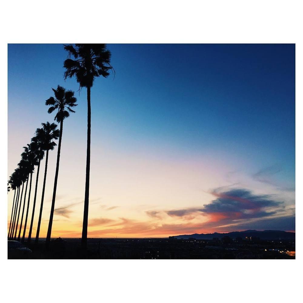 California Dreamin' IV. #LMU